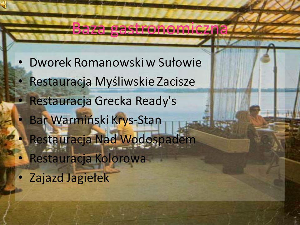 Baza gastronomiczna Dworek Romanowski w Sułowie
