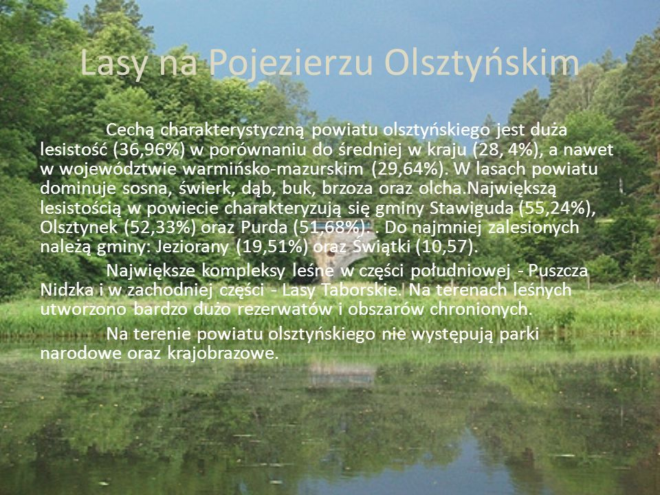 Lasy na Pojezierzu Olsztyńskim