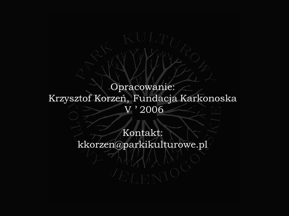 Krzysztof Korzeń, Fundacja Karkonoska