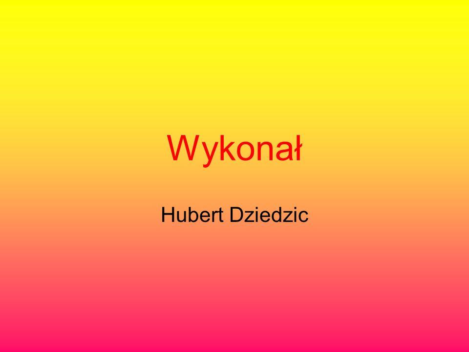 Wykonał Hubert Dziedzic