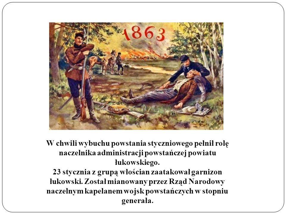 W chwili wybuchu powstania styczniowego pełnił rolę naczelnika administracji powstańczej powiatu łukowskiego.