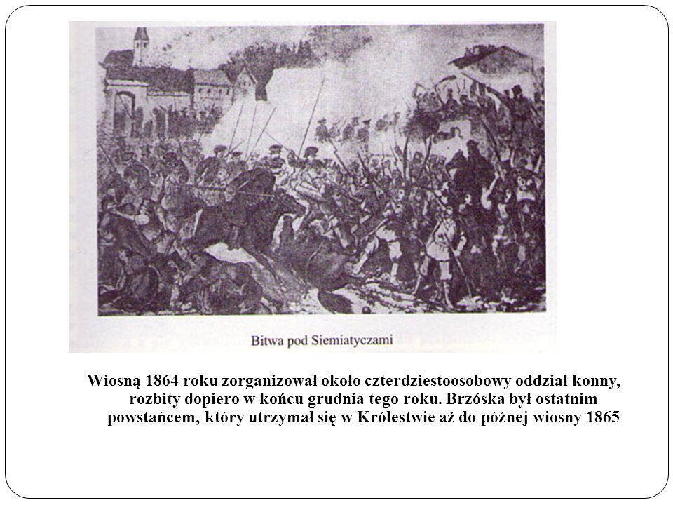 Wiosną 1864 roku zorganizował około czterdziestoosobowy oddział konny, rozbity dopiero w końcu grudnia tego roku.