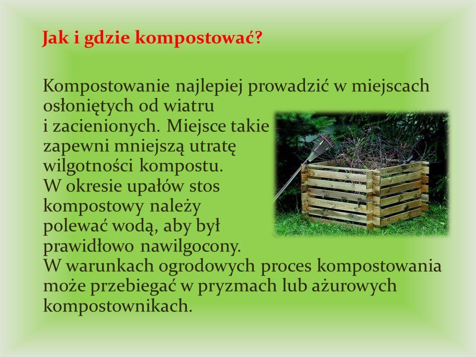 Jak i gdzie kompostować