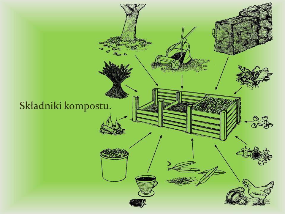 Składniki kompostu.