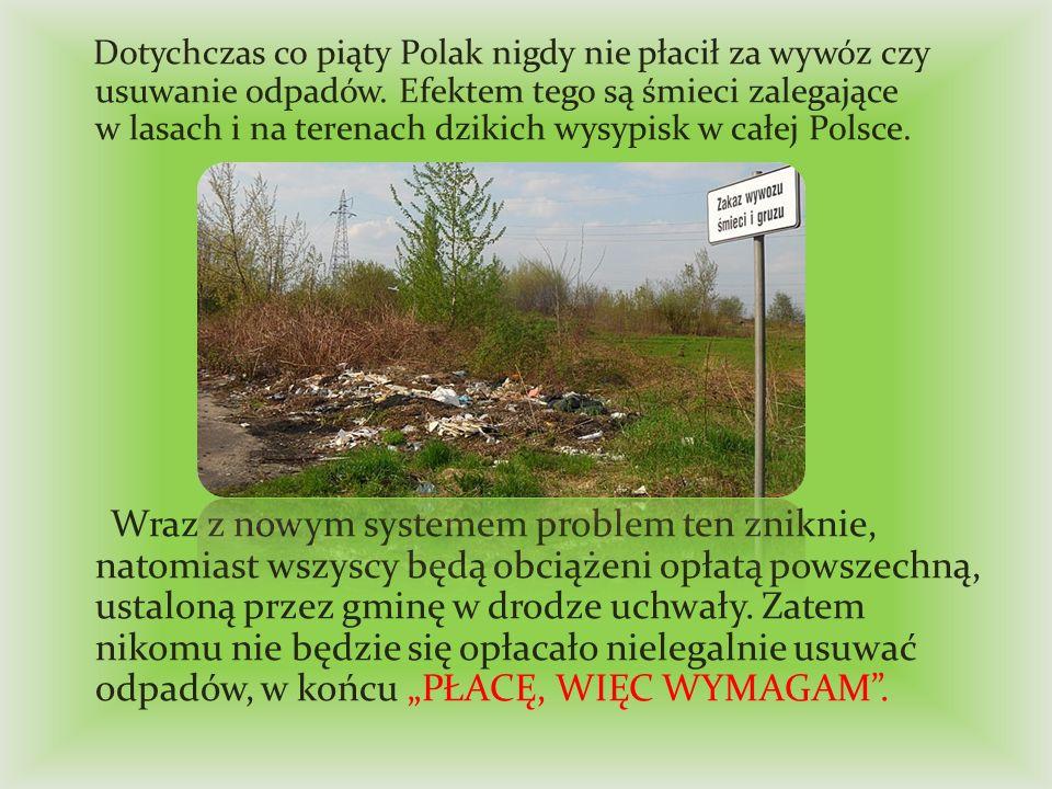 Dotychczas co piąty Polak nigdy nie płacił za wywóz czy usuwanie odpadów. Efektem tego są śmieci zalegające w lasach i na terenach dzikich wysypisk w całej Polsce.