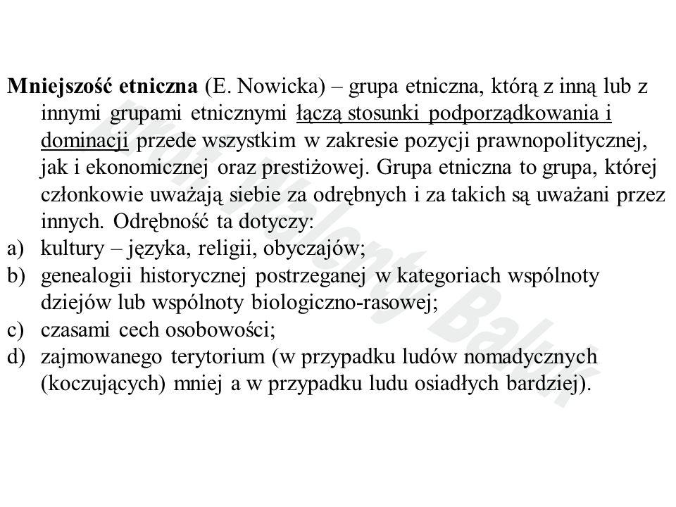 Mniejszość etniczna (E