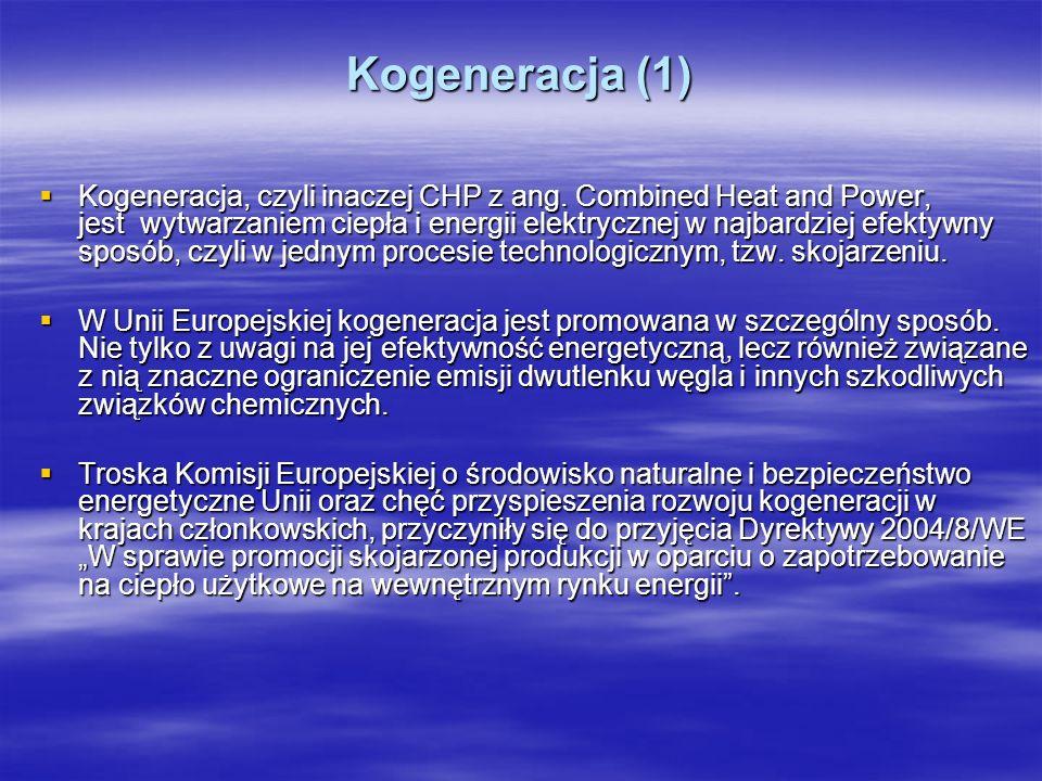 Kogeneracja (1)