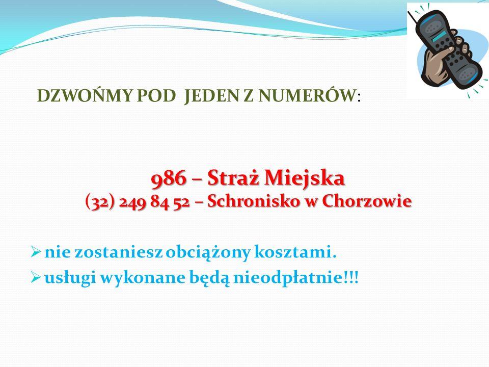 986 – Straż Miejska (32) 249 84 52 – Schronisko w Chorzowie