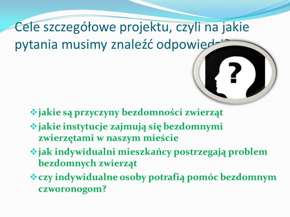 Cele szczegółowe projektu, czyli na jakie pytania musimy znaleźć odpowiedzi