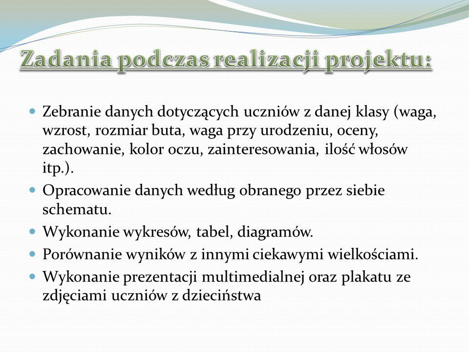 Zadania podczas realizacji projektu: