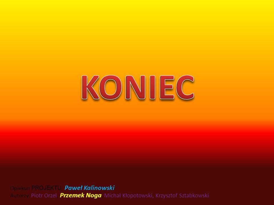 KONIEC Opiekun PROJEKTU: Paweł Kalinowski Autorzy: Piotr Orzel, Przemek Noga, Michał Kłopotowski, Krzysztof Sztabkowski