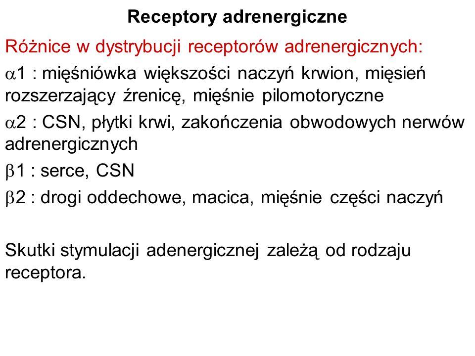 Receptory adrenergiczne