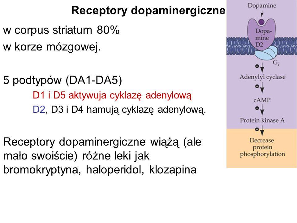 Receptory dopaminergiczne
