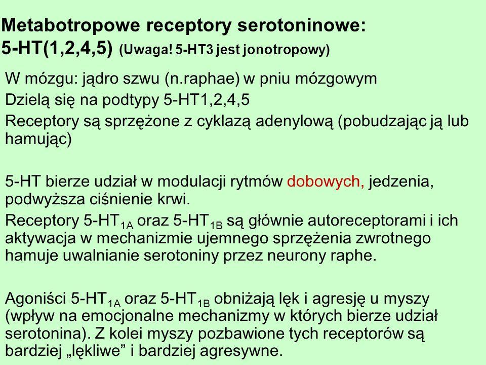 Metabotropowe receptory serotoninowe: 5-HT(1,2,4,5) (Uwaga