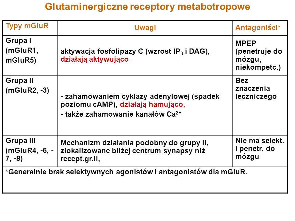 Glutaminergiczne receptory metabotropowe