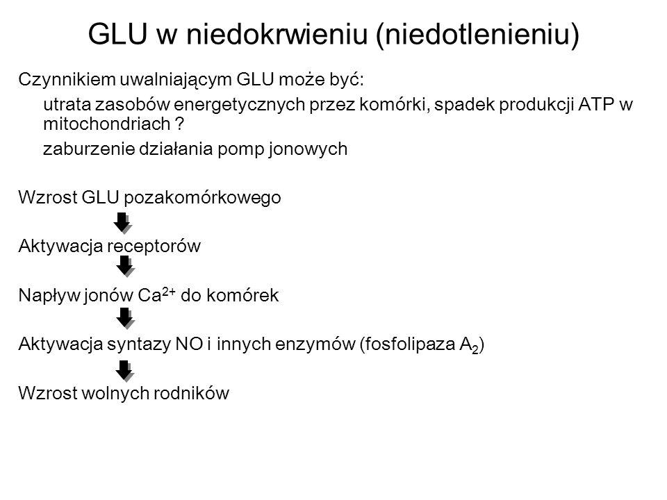 GLU w niedokrwieniu (niedotlenieniu)