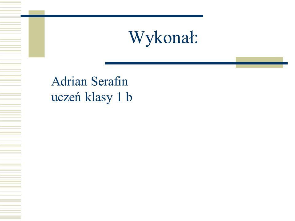 Wykonał: Adrian Serafin uczeń klasy 1 b