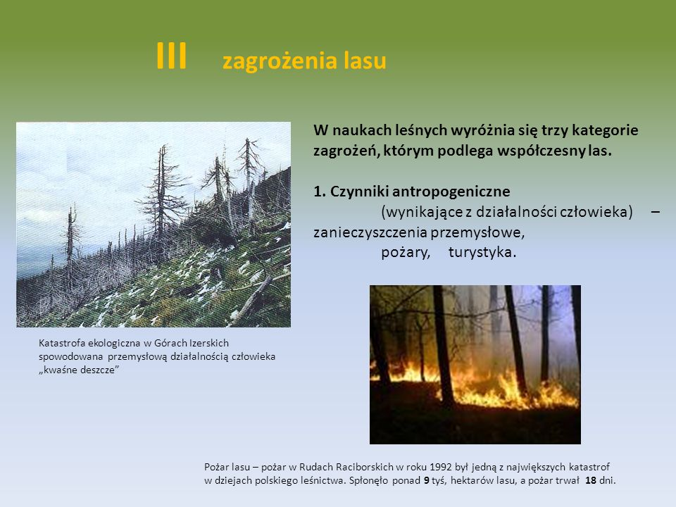 III zagrożenia lasuW naukach leśnych wyróżnia się trzy kategorie zagrożeń, którym podlega współczesny las.
