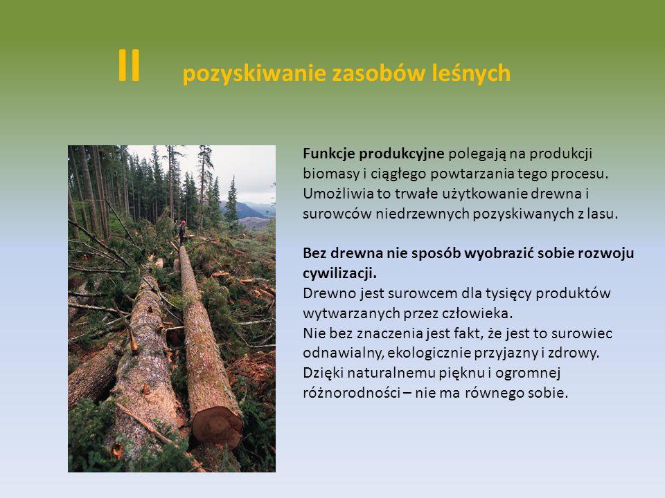 II pozyskiwanie zasobów leśnych