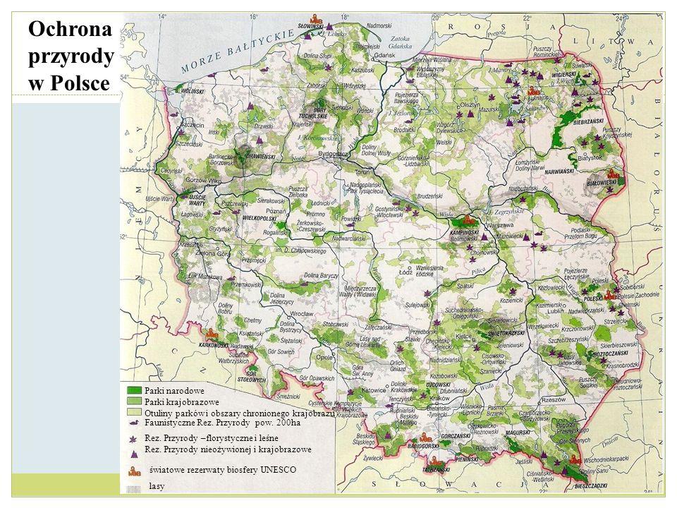 Ochrona przyrody w Polsce Parki narodowe Parki krajobrazowe