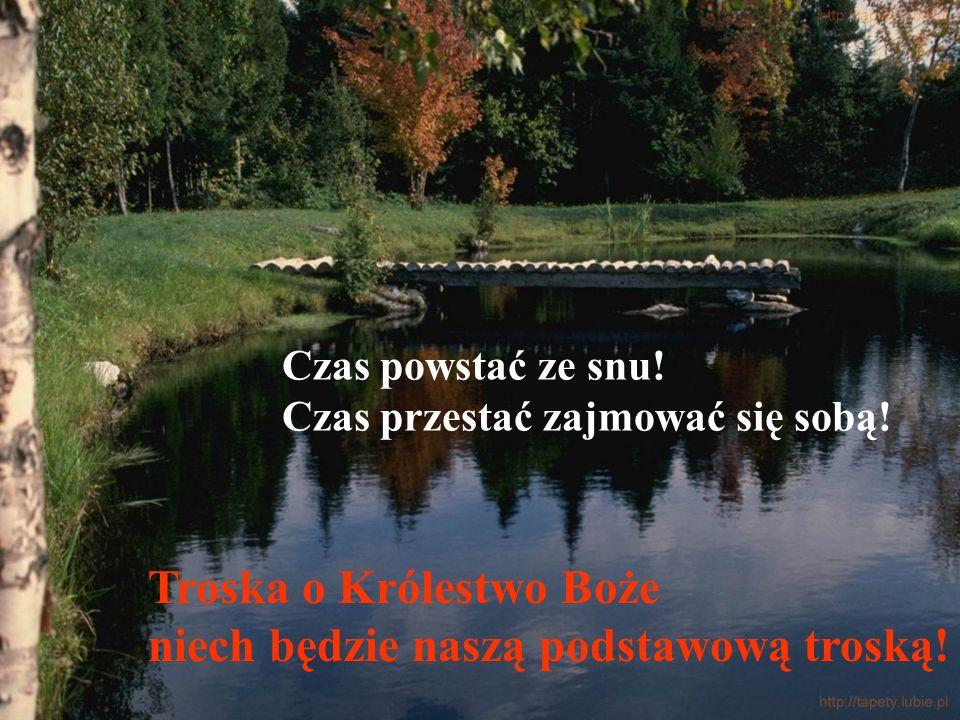 Troska o Królestwo Boże niech będzie naszą podstawową troską!