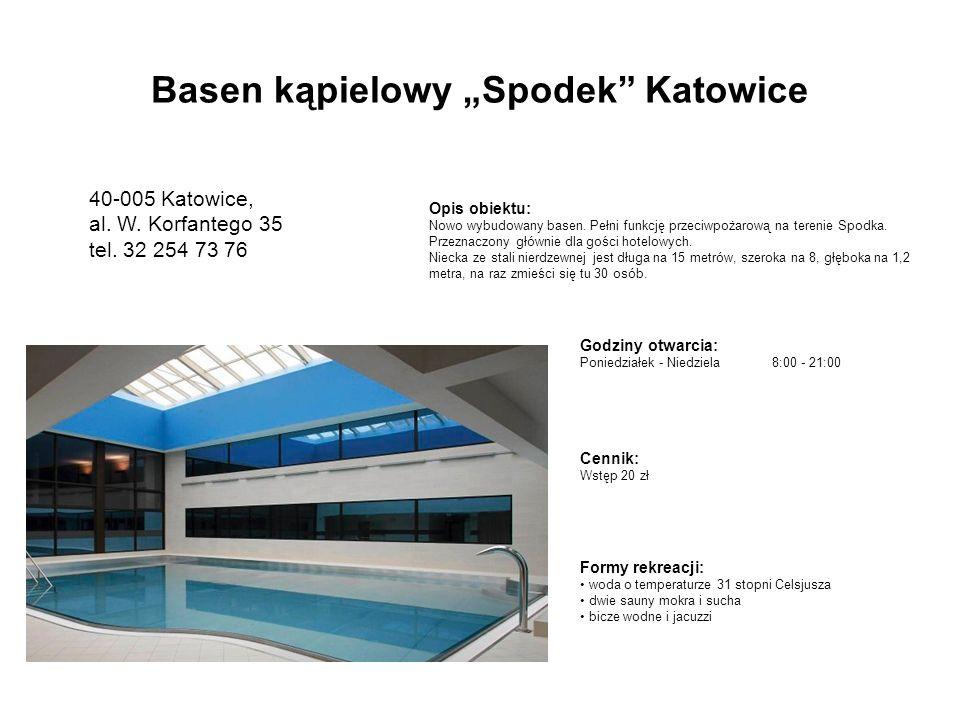 "Basen kąpielowy ""Spodek Katowice"