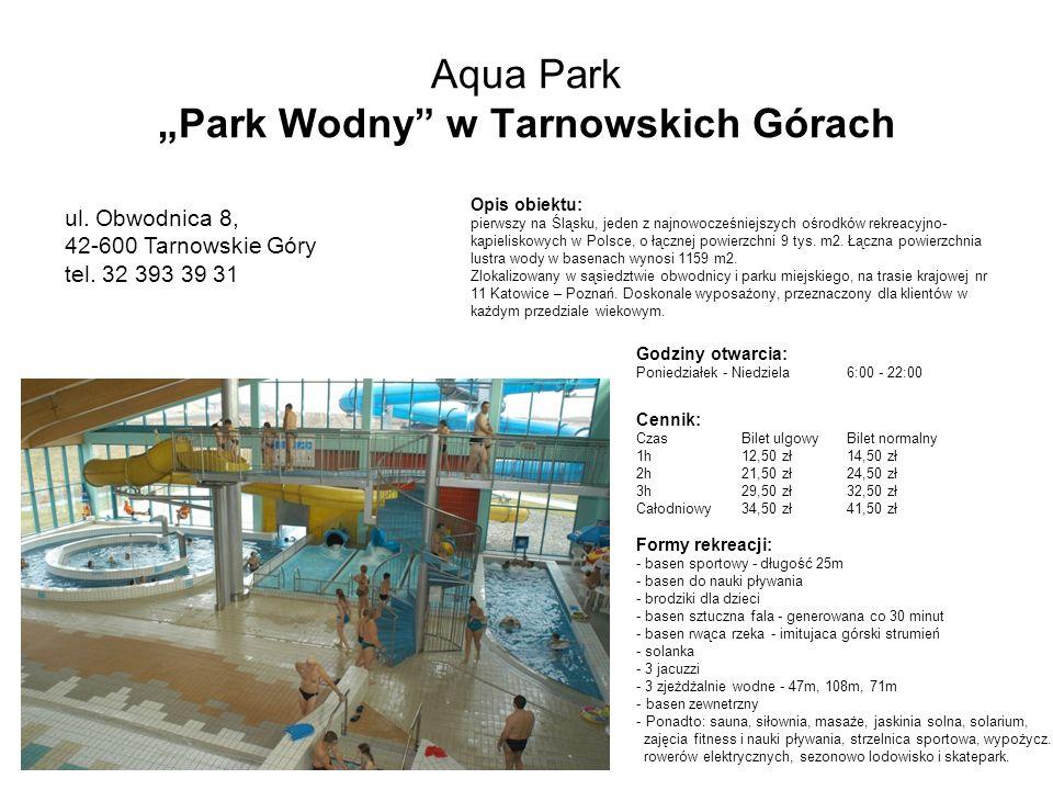 """Aqua Park """"Park Wodny w Tarnowskich Górach"""