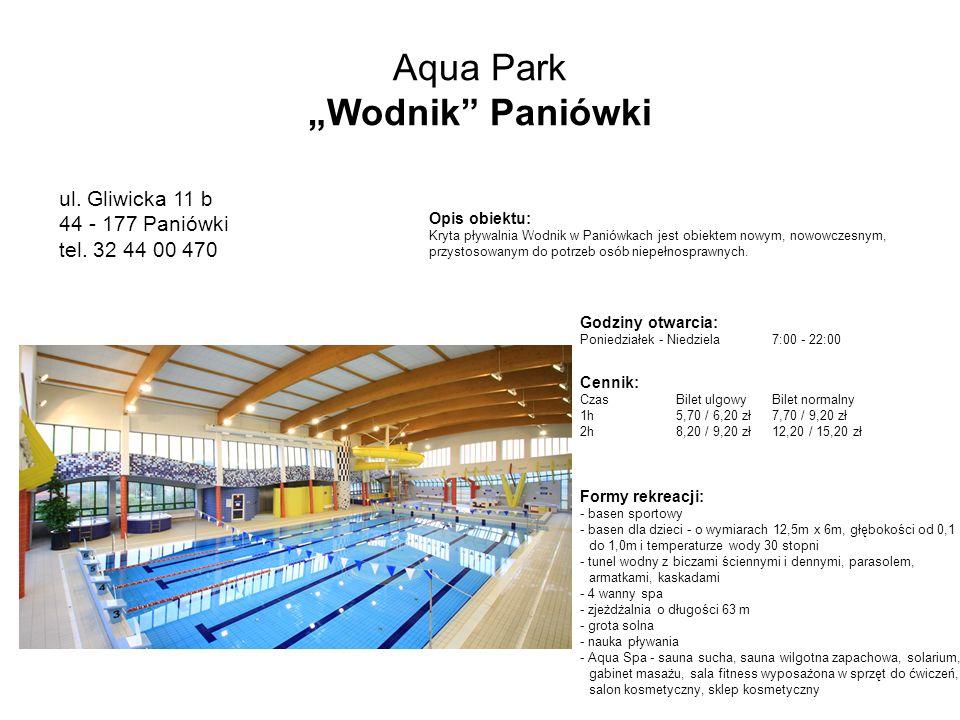"Aqua Park ""Wodnik Paniówki"