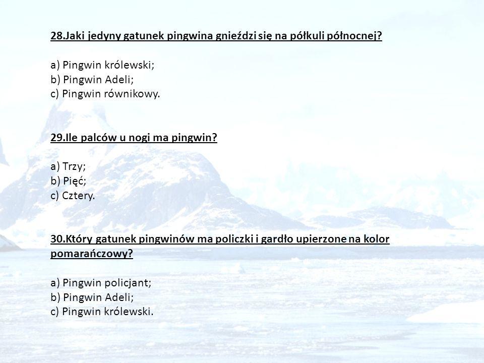 28. Jaki jedyny gatunek pingwina gnieździ się na półkuli północnej