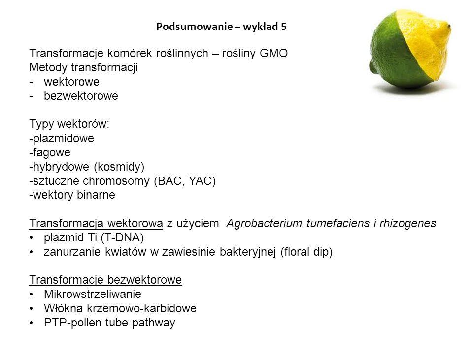 Podsumowanie – wykład 5 Transformacje komórek roślinnych – rośliny GMO. Metody transformacji. wektorowe.