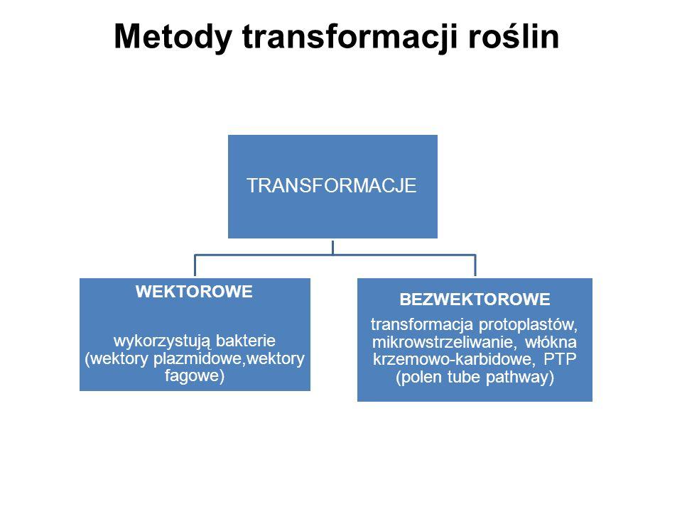Metody transformacji roślin
