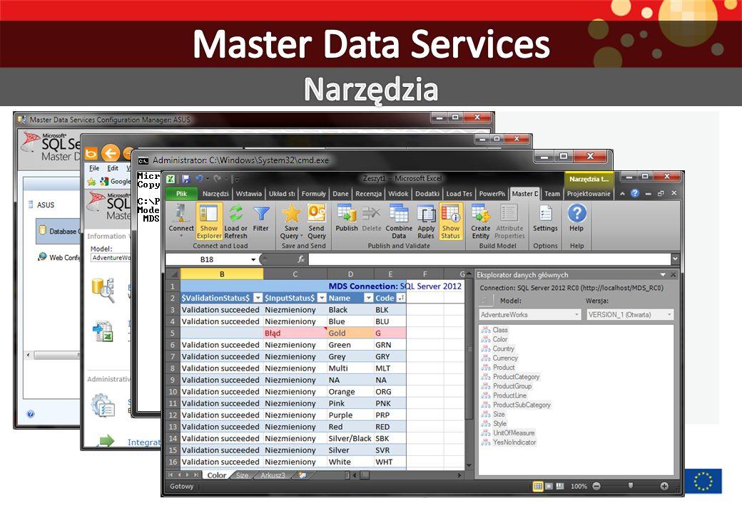 Master Data Services Narzędzia