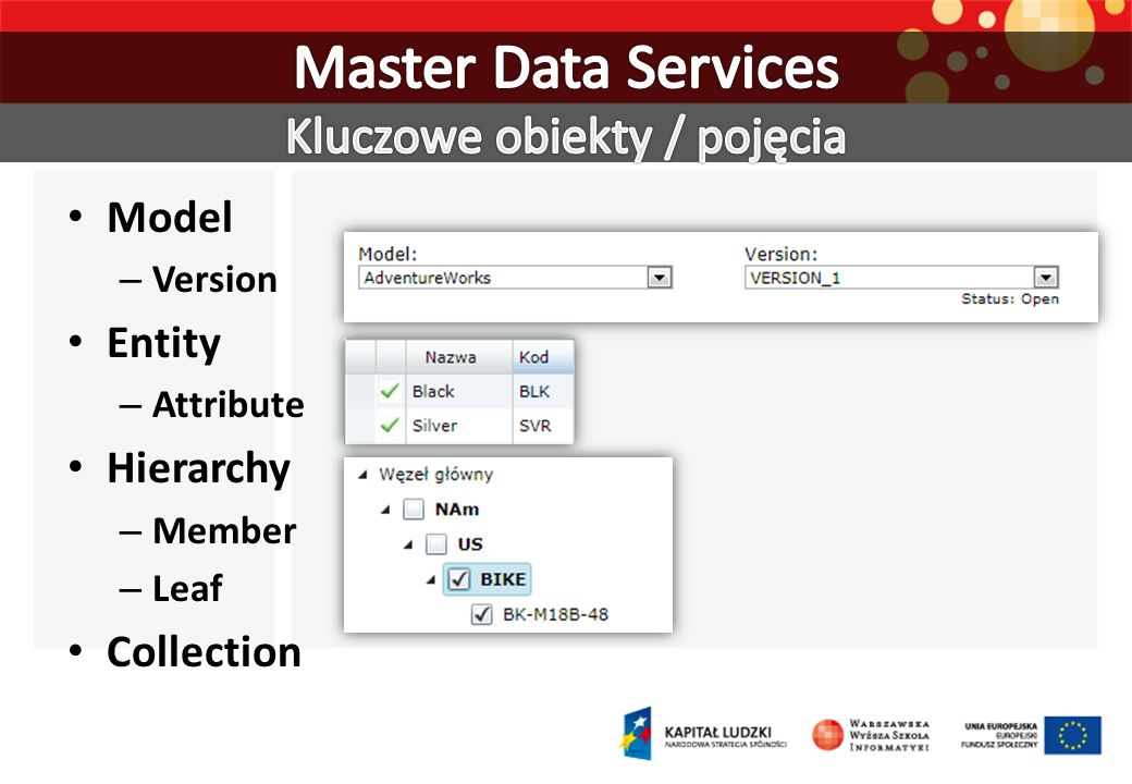 Master Data Services Kluczowe obiekty / pojęcia