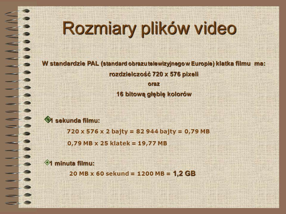 rozdzielczość 720 x 576 pixeli