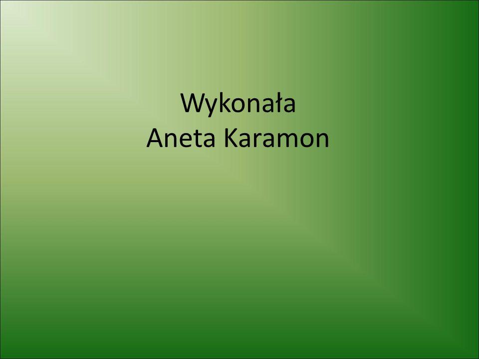 Wykonała Aneta Karamon