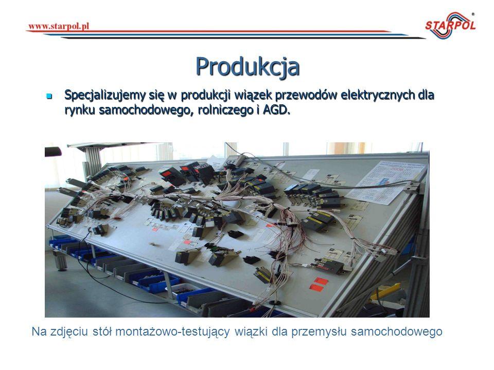 Na zdjęciu stół montażowo-testujący wiązki dla przemysłu samochodowego