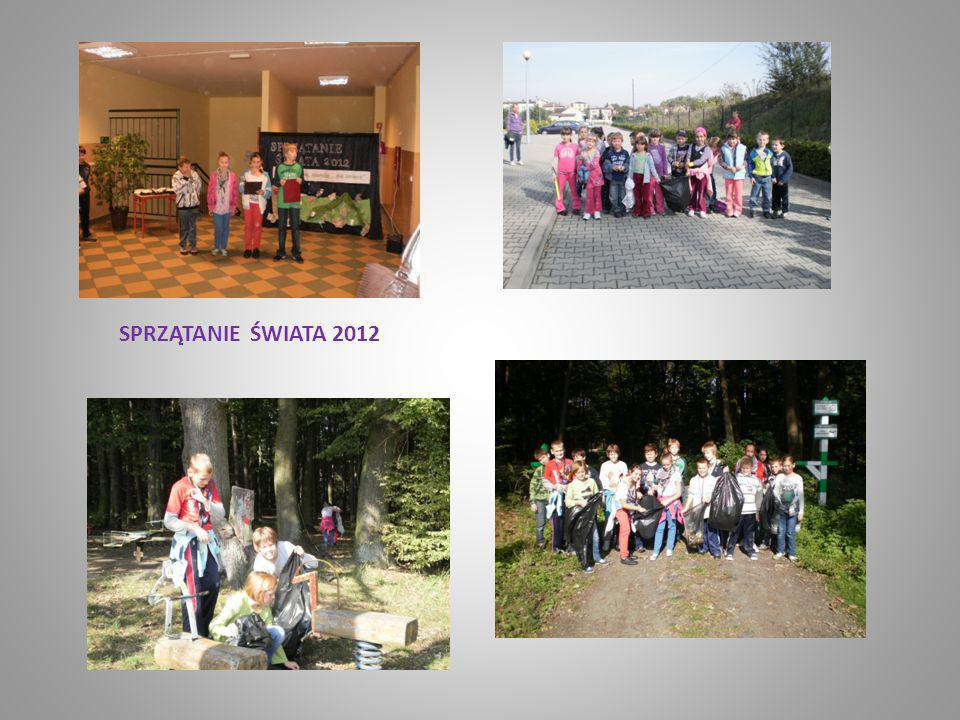 SPRZĄTANIE ŚWIATA 2012