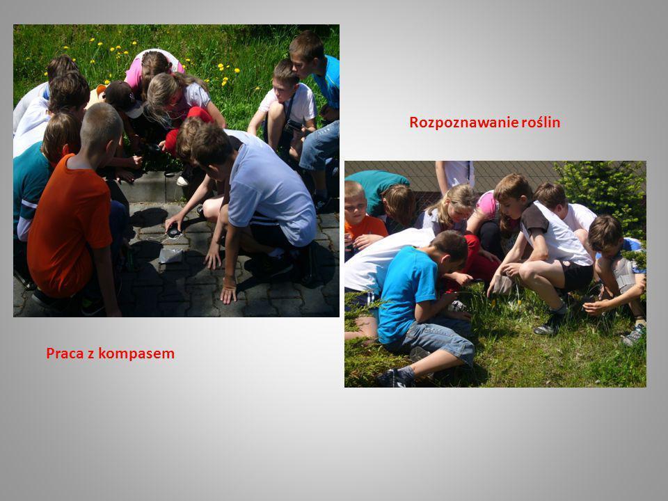 Rozpoznawanie roślin Praca z kompasem