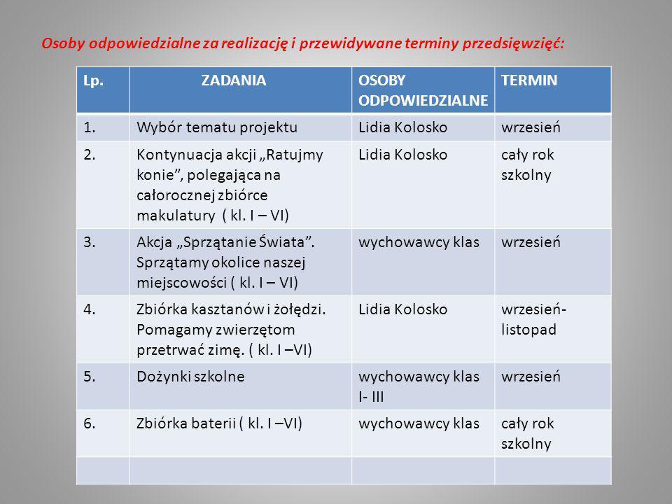 Osoby odpowiedzialne za realizację i przewidywane terminy przedsięwzięć: