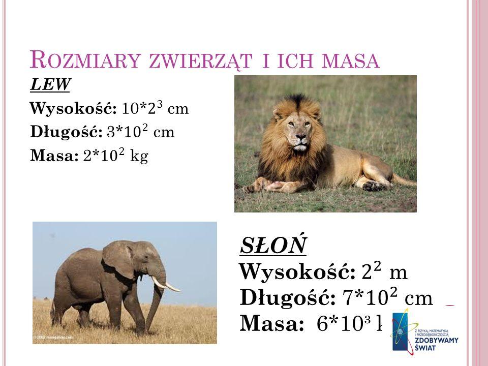 Rozmiary zwierząt i ich masa