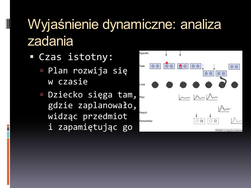 Wyjaśnienie dynamiczne: analiza zadania