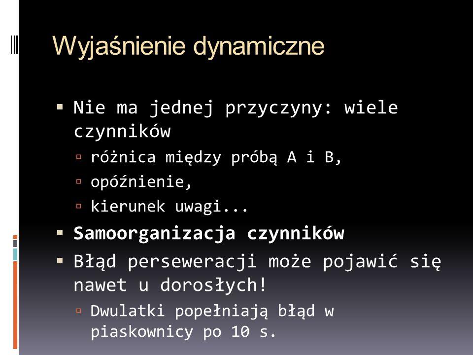 Wyjaśnienie dynamiczne