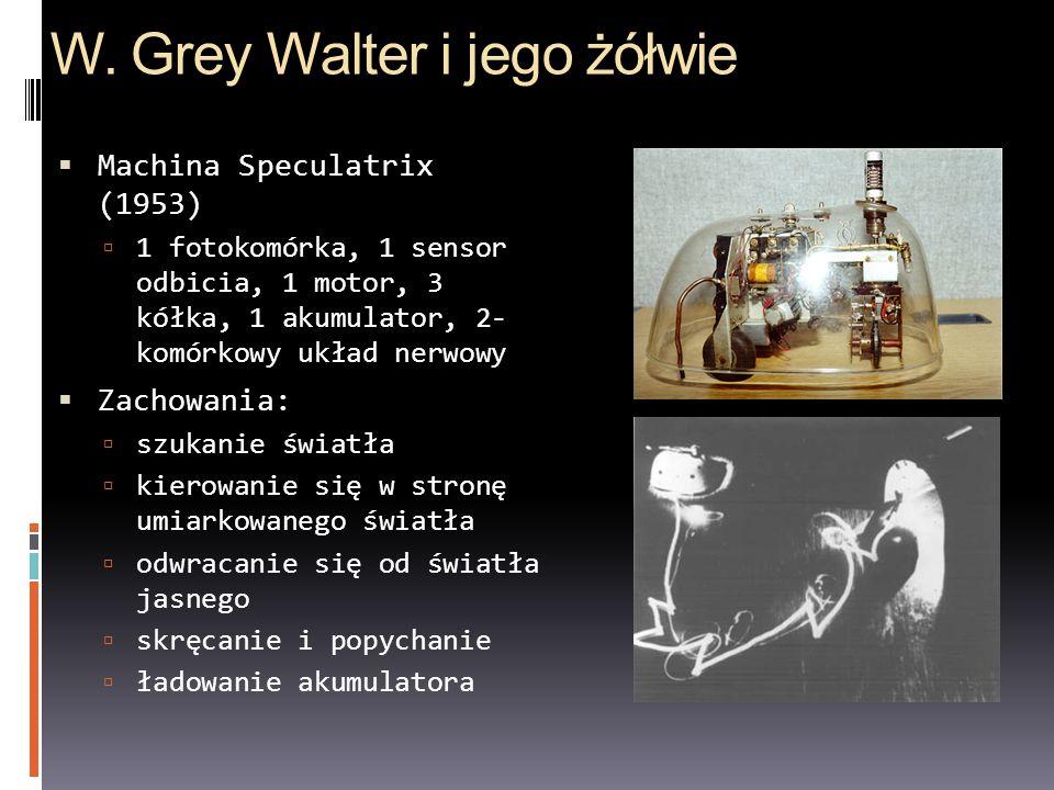W. Grey Walter i jego żółwie