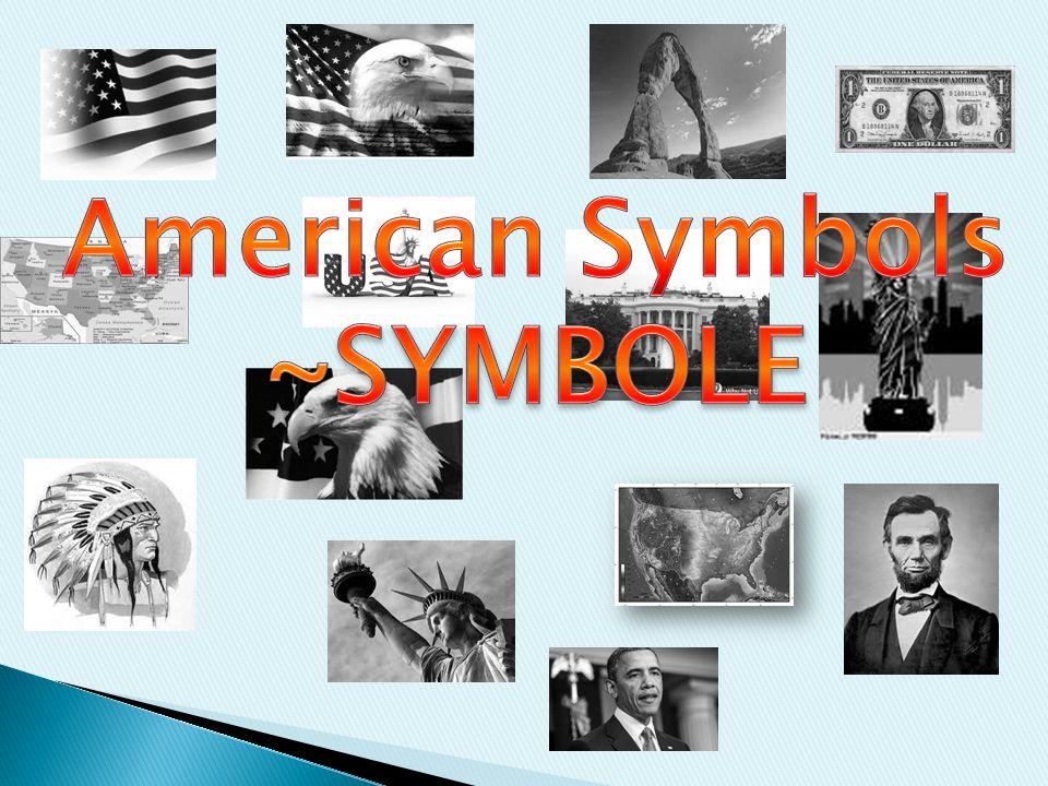 American Symbols ~SYMBOLE
