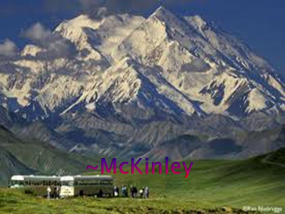 ~McKinley