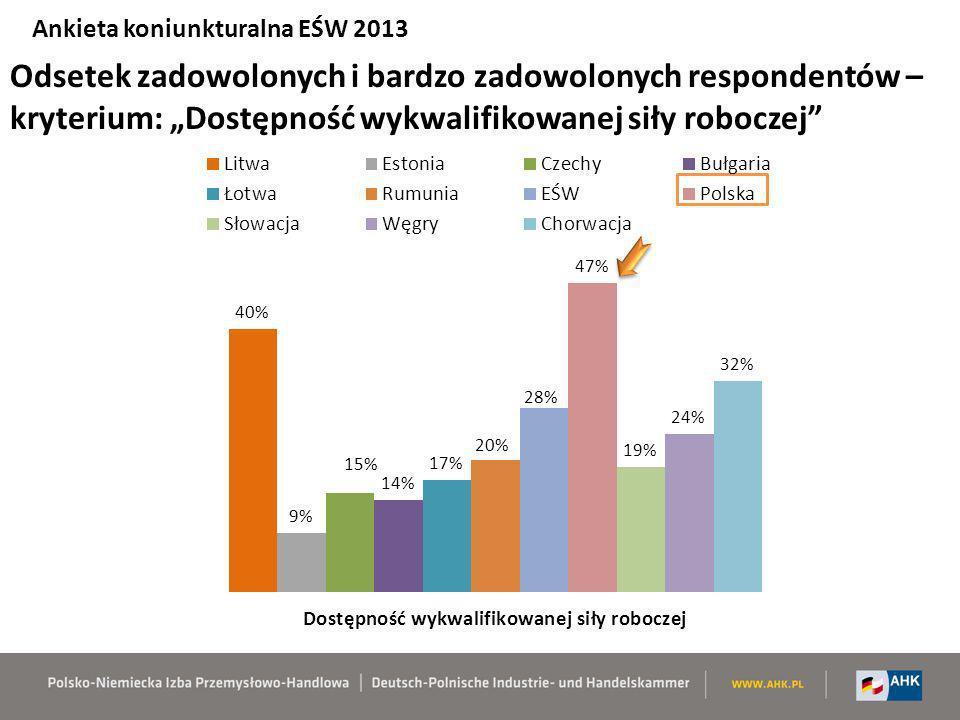 Ankieta koniunkturalna EŚW 2013