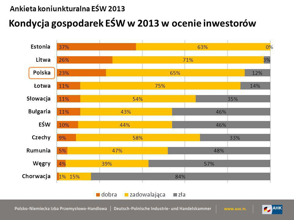 Kondycja gospodarek EŚW w 2013 w ocenie inwestorów