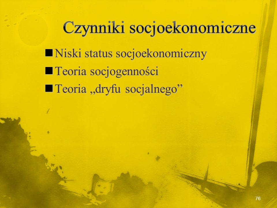 Czynniki socjoekonomiczne