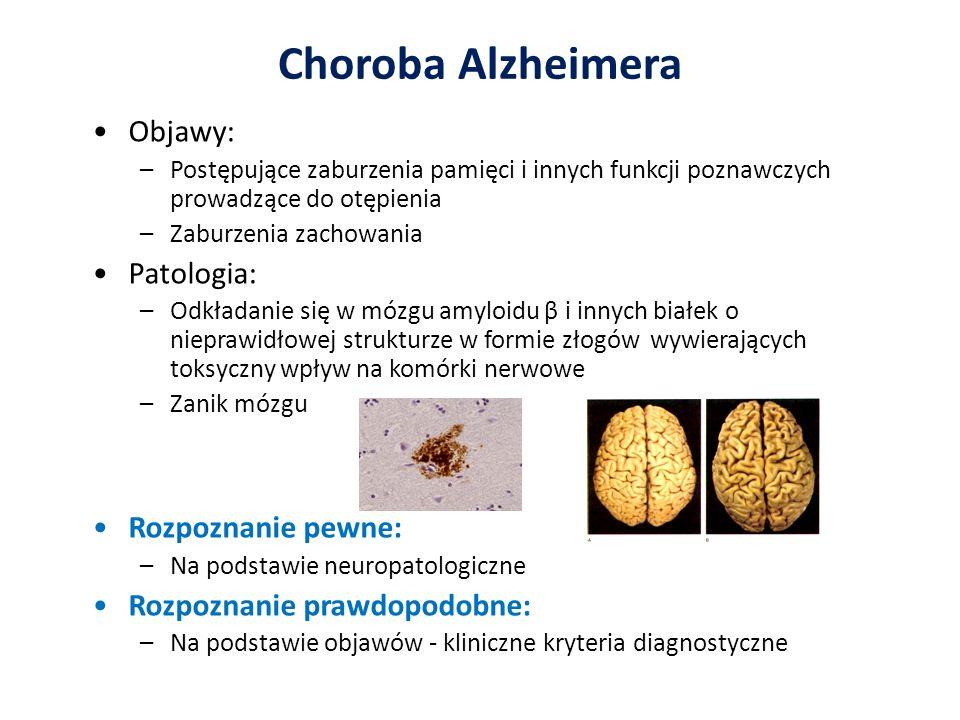 Choroba Alzheimera Objawy: Patologia: Rozpoznanie pewne: