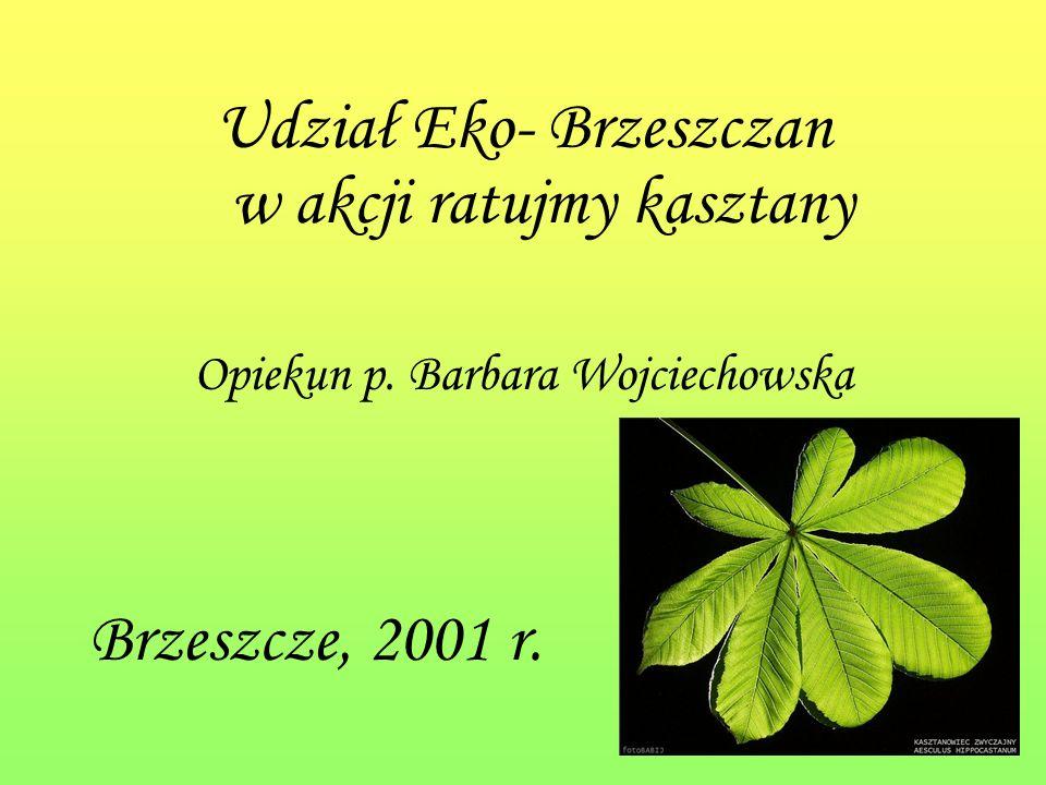 Udział Eko- Brzeszczan w akcji ratujmy kasztany